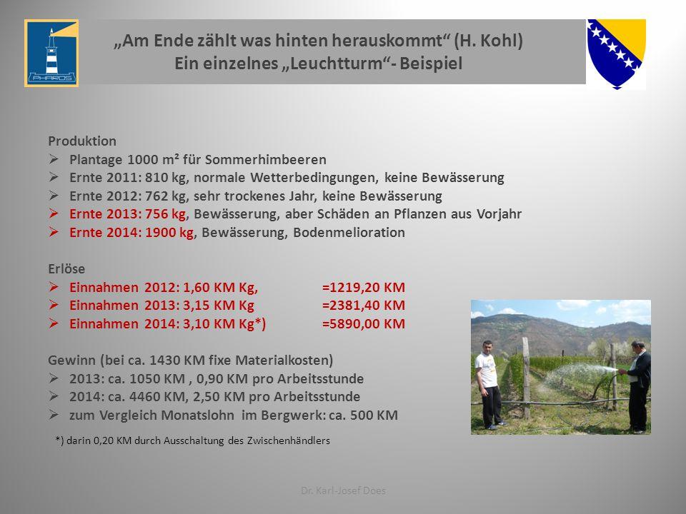 Produktion  Plantage 1000 m² für Sommerhimbeeren  Ernte 2011: 810 kg, normale Wetterbedingungen, keine Bewässerung  Ernte 2012: 762 kg, sehr trockenes Jahr, keine Bewässerung  Ernte 2013: 756 kg, Bewässerung, aber Schäden an Pflanzen aus Vorjahr  Ernte 2014: 1900 kg, Bewässerung, Bodenmelioration Erlöse  Einnahmen 2012: 1,60 KM Kg, =1219,20 KM  Einnahmen 2013: 3,15 KM Kg=2381,40 KM  Einnahmen 2014: 3,10 KM Kg*)=5890,00 KM Gewinn (bei ca.