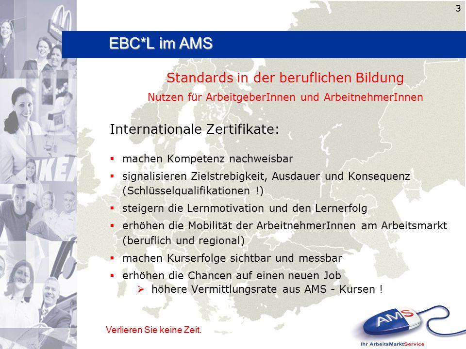 Wer ? Verlieren Sie keine Zeit. 3 Standards in der beruflichen Bildung Nutzen für ArbeitgeberInnen und ArbeitnehmerInnen Internationale Zertifikate: 