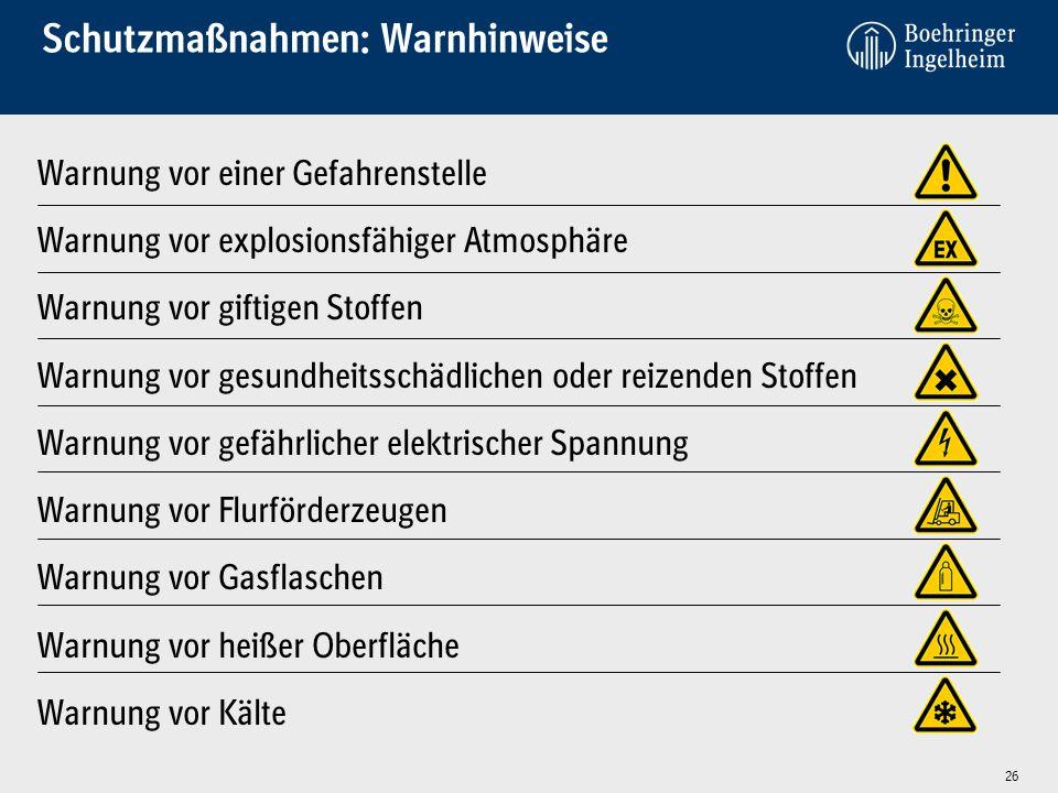 Schutzmaßnahmen: Warnhinweise Warnung vor einer Gefahrenstelle Warnung vor explosionsfähiger Atmosphäre Warnung vor giftigen Stoffen Warnung vor gesun