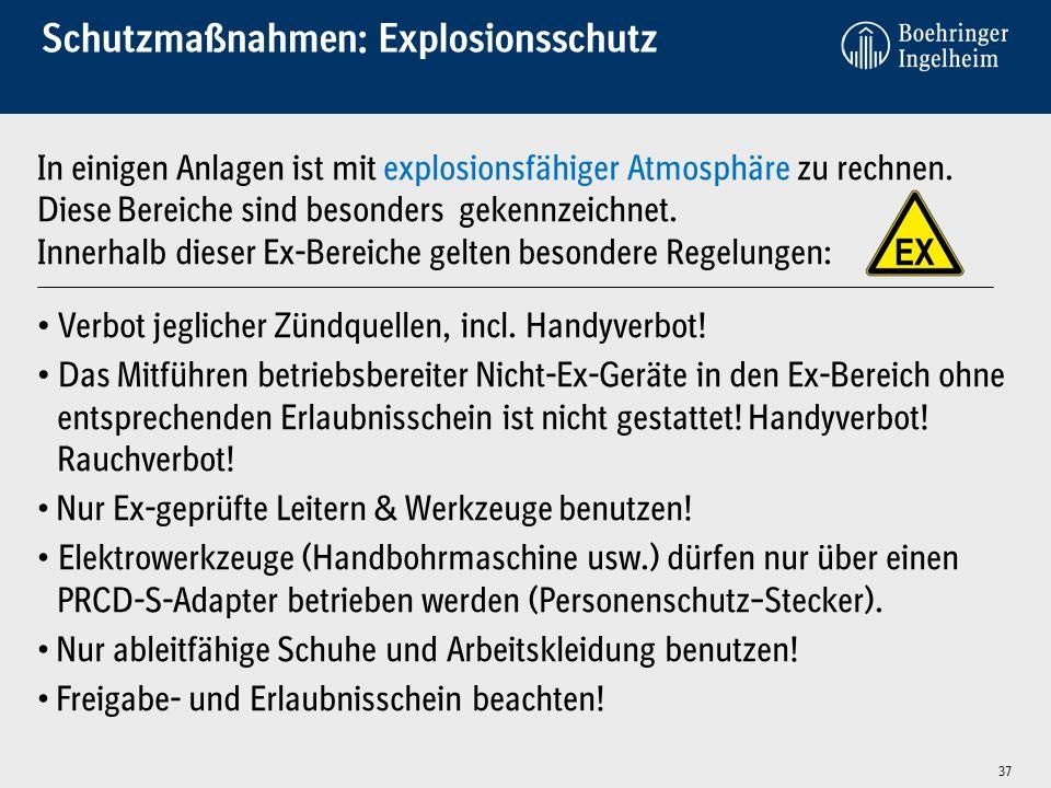 Schutzmaßnahmen: Explosionsschutz In einigen Anlagen ist mit explosionsfähiger Atmosphäre zu rechnen. Diese Bereiche sind besonders gekennzeichnet. In