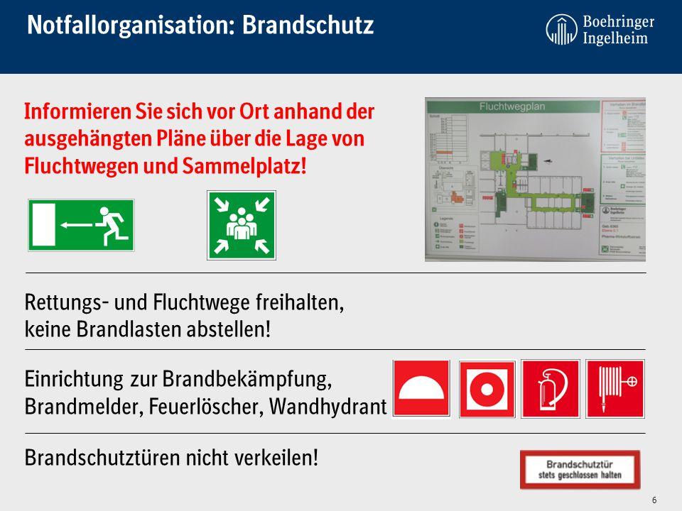 Notfallorganisation: Brandschutz Informieren Sie sich vor Ort anhand der ausgehängten Pläne über die Lage von Fluchtwegen und Sammelplatz! Rettungs- u