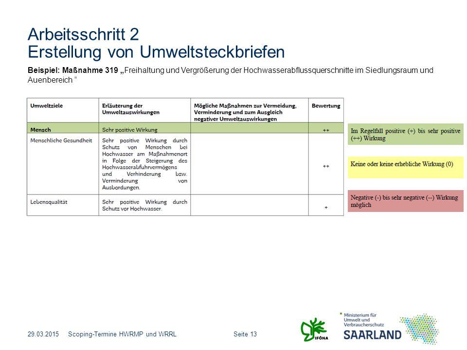 """Seite 13Scoping-Termine HWRMP und WRRL Arbeitsschritt 2 Erstellung von Umweltsteckbriefen 29.03.2015 Beispiel: Maßnahme 319 """"Freihaltung und Vergrößer"""