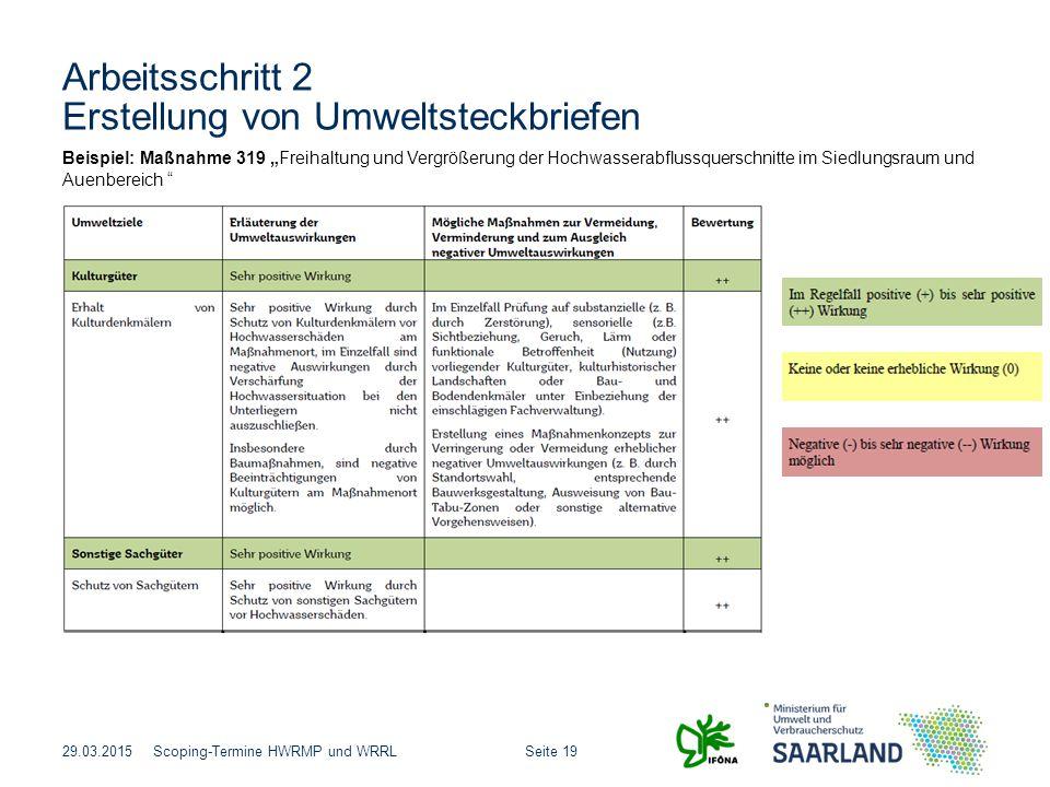 """Seite 19Scoping-Termine HWRMP und WRRL Arbeitsschritt 2 Erstellung von Umweltsteckbriefen 29.03.2015 Beispiel: Maßnahme 319 """"Freihaltung und Vergrößer"""