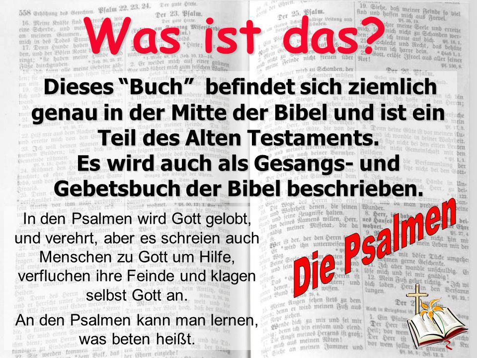 Was ist das? In den Psalmen wird Gott gelobt, und verehrt, aber es schreien auch Menschen zu Gott um Hilfe, verfluchen ihre Feinde und klagen selbst G