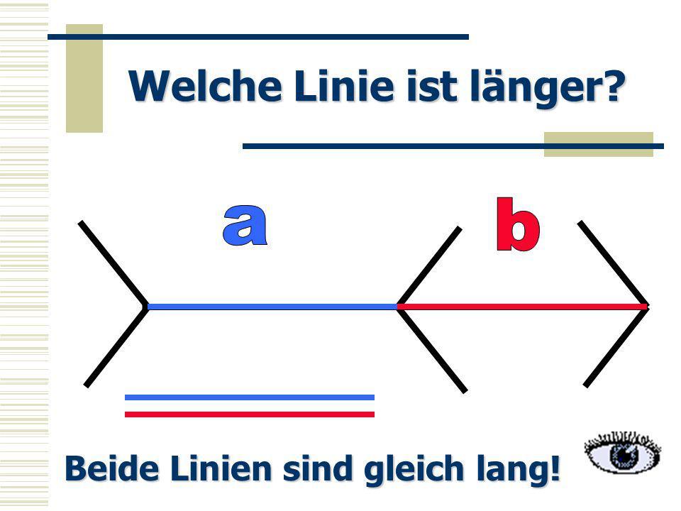 Welche Linie ist länger? Beide Linien sind gleich lang!