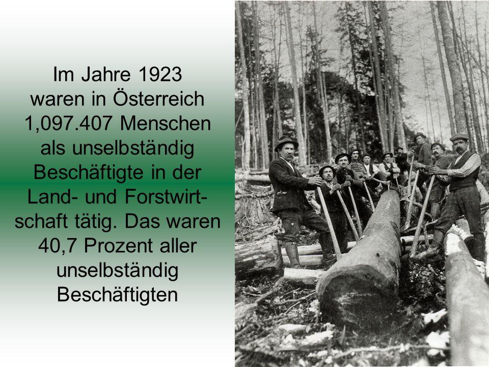 Im Jahre 1923 waren in Österreich 1,097.407 Menschen als unselbständig Beschäftigte in der Land- und Forstwirt- schaft tätig.