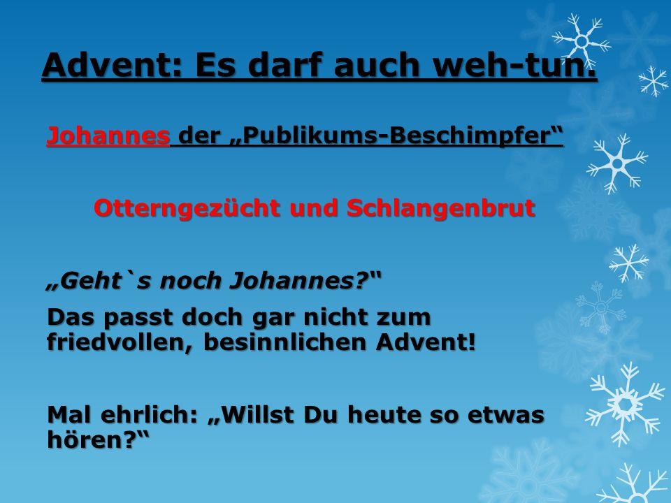 """Advent: Es darf auch weh-tun. Johannes der """"Publikums-Beschimpfer"""" Otterngezücht und Schlangenbrut """"Geht`s noch Johannes?"""" Das passt doch gar nicht zu"""