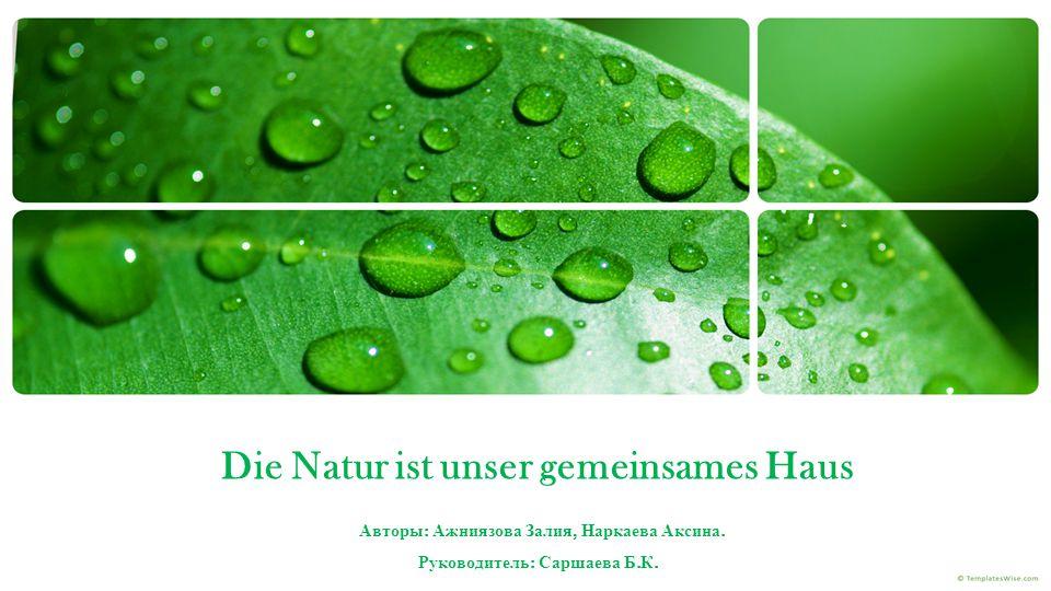 Die Natur ist unser gemeinsames Haus Авторы : Ажниязова Залия, Наркаева Аксина.