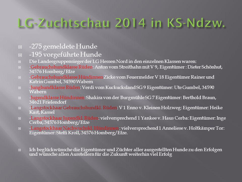  -275 gemeldete Hunde  -195 vorgeführte Hunde  Die Landesgruppensieger der LG Hessen Nord in den einzelnen Klassen waren:  -Gebrauchshundklasse Rü