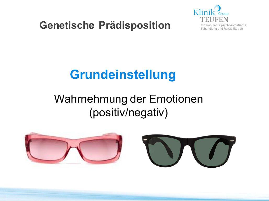 Genetische Prädisposition Grundeinstellung Wahrnehmung der Emotionen (positiv/negativ)