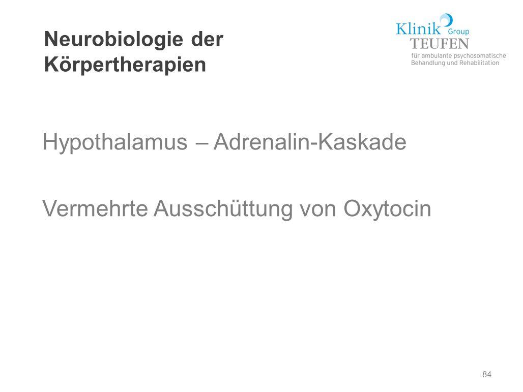 84 Neurobiologie der Körpertherapien Hypothalamus – Adrenalin-Kaskade Vermehrte Ausschüttung von Oxytocin