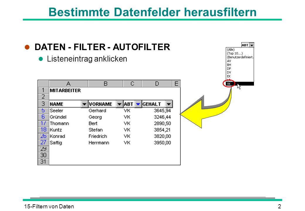 15-Filtern von Daten2 Bestimmte Datenfelder herausfiltern l DATEN - FILTER - AUTOFILTER l Listeneintrag anklicken
