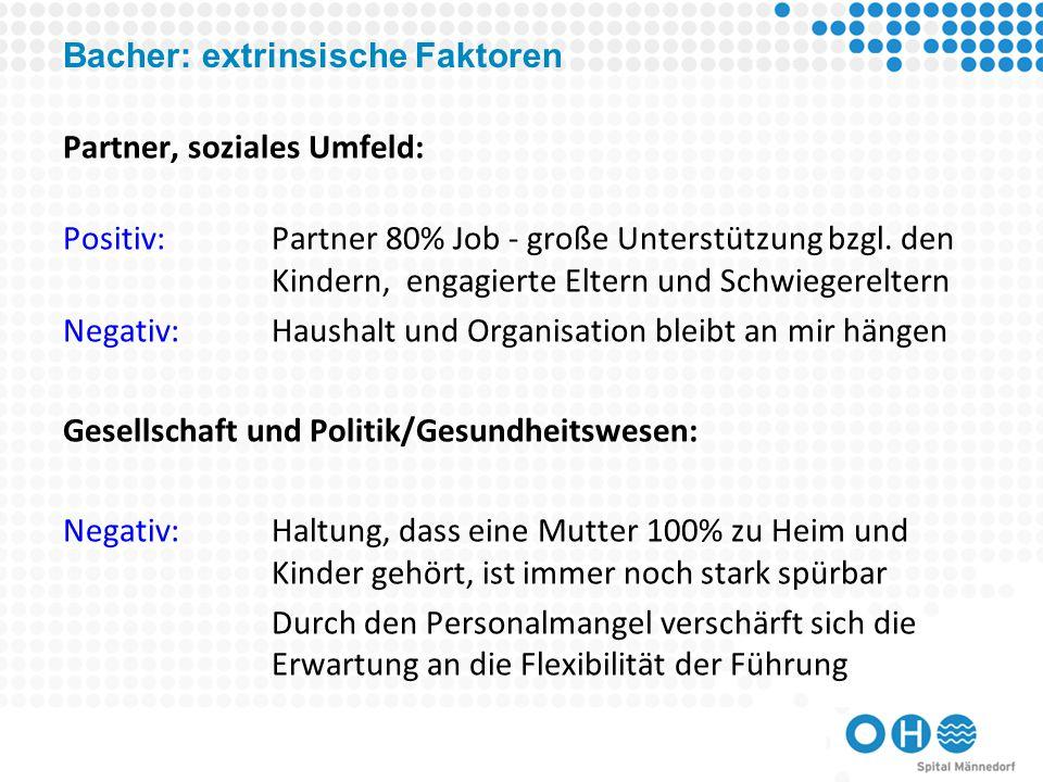 Bacher: extrinsische Faktoren Partner, soziales Umfeld: Positiv:Partner 80% Job - große Unterstützung bzgl.