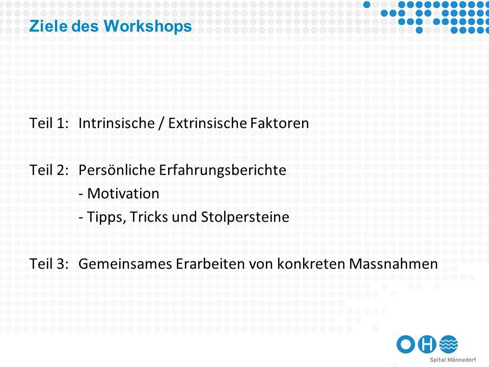 Ziele des Workshops Teil 1:Intrinsische / Extrinsische Faktoren Teil 2:Persönliche Erfahrungsberichte - Motivation - Tipps, Tricks und Stolpersteine Teil 3:Gemeinsames Erarbeiten von konkreten Massnahmen