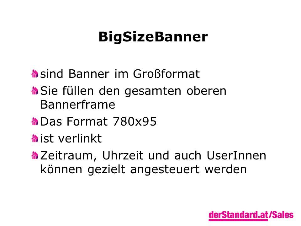 BigSizeBanner sind Banner im Großformat Sie füllen den gesamten oberen Bannerframe Das Format 780x95 ist verlinkt Zeitraum, Uhrzeit und auch UserInnen können gezielt angesteuert werden