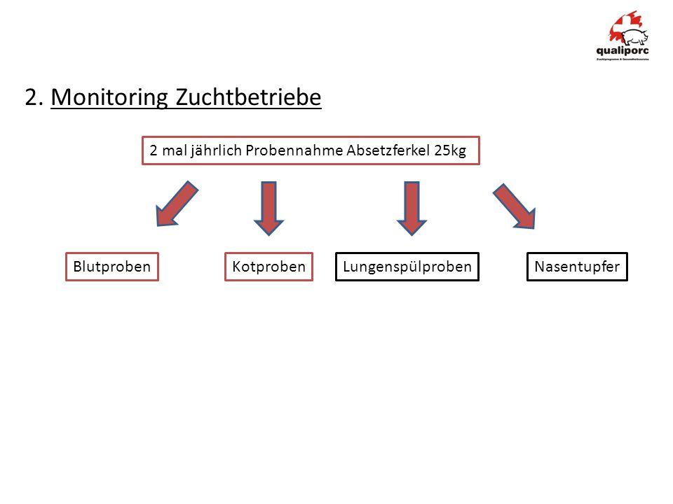 2. Monitoring Zuchtbetriebe 2 mal jährlich Probennahme Absetzferkel 25kg BlutprobenKotprobenLungenspülproben Nasentupfer