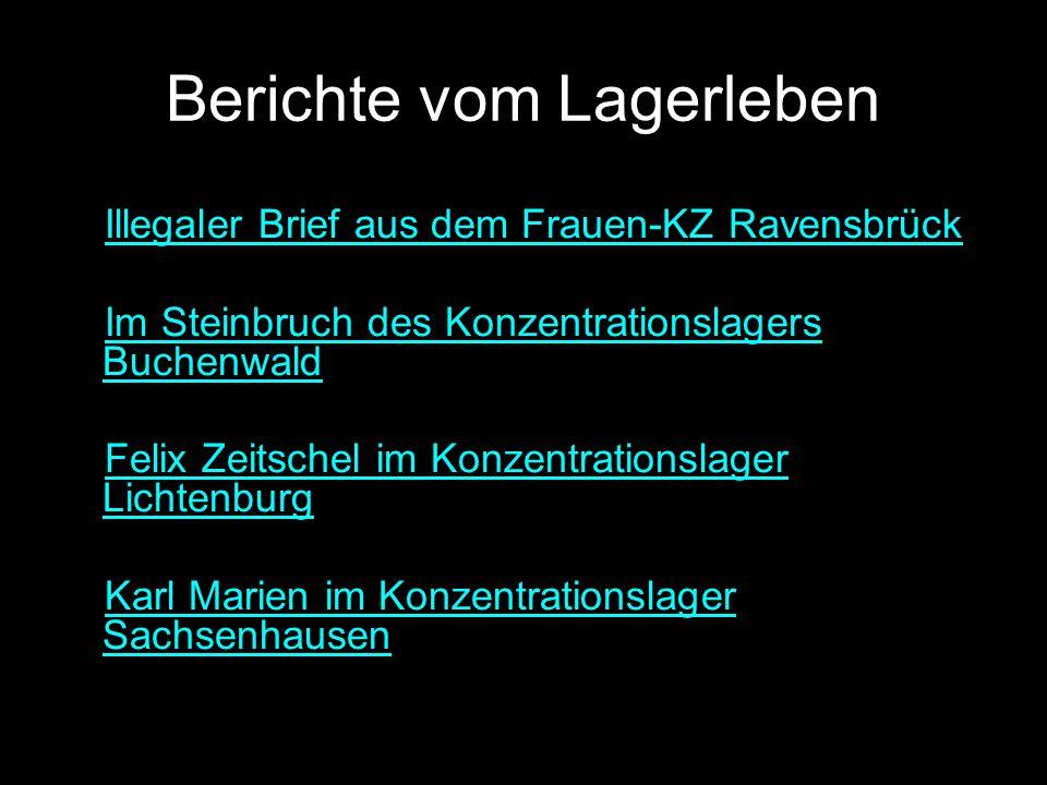 Die «Endlösung» Begriffsdefinition Bericht von Rudolf Höss, anlässlich des Nürnberger Prozesses, 5.
