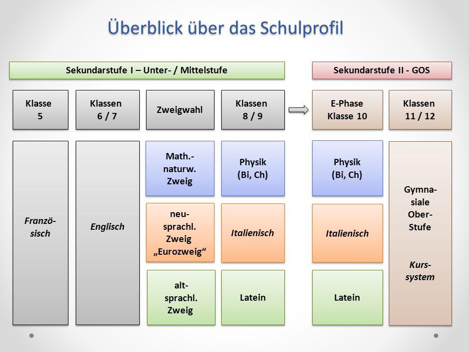 Franzö- sisch Franzö- sisch Klasse 5 Klasse 5 Klassen 6 / 7 Klassen 6 / 7 Englisch Klassen 8 / 9 Klassen 8 / 9 Physik (Bi, Ch) Physik (Bi, Ch) Italien