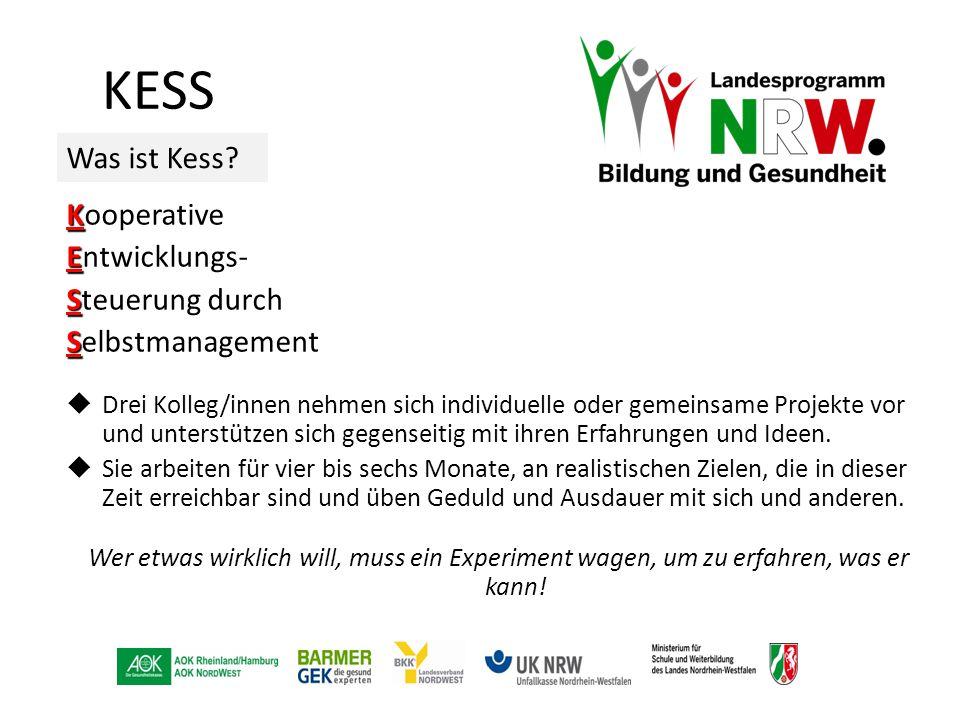 KESS Was ist Kess? K Kooperative E Entwicklungs- S Steuerung durch S Selbstmanagement  Drei Kolleg/innen nehmen sich individuelle oder gemeinsame Pro