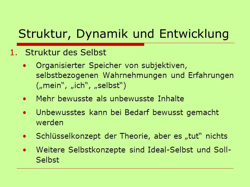 """Struktur, Dynamik und Entwicklung 1.Struktur des Selbst Organisierter Speicher von subjektiven, selbstbezogenen Wahrnehmungen und Erfahrungen (""""mein"""","""