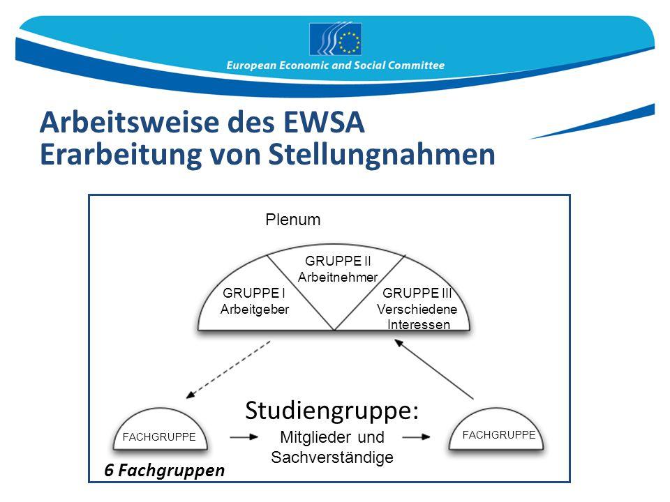 Arbeitsweise des EWSA Erarbeitung von Stellungnahmen 6 Fachgruppen Plenum GRUPPE II Arbeitnehmer GRUPPE I Arbeitgeber GRUPPE III Verschiedene Interess