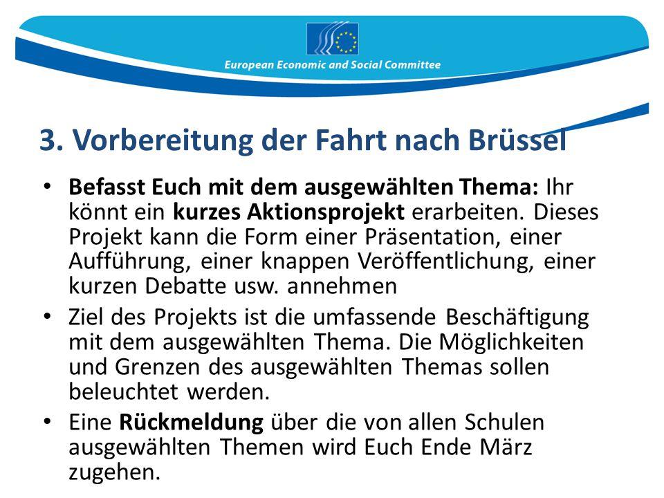3. Vorbereitung der Fahrt nach Brüssel Befasst Euch mit dem ausgewählten Thema: Ihr könnt ein kurzes Aktionsprojekt erarbeiten. Dieses Projekt kann di