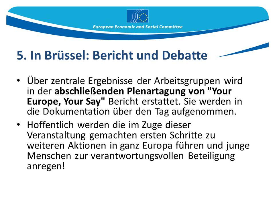 5. In Brüssel: Bericht und Debatte Über zentrale Ergebnisse der Arbeitsgruppen wird in der abschließenden Plenartagung von