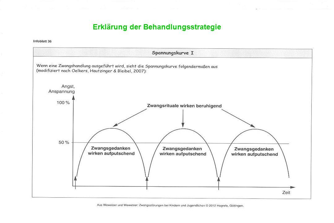Erklärung der Behandlungsstrategie