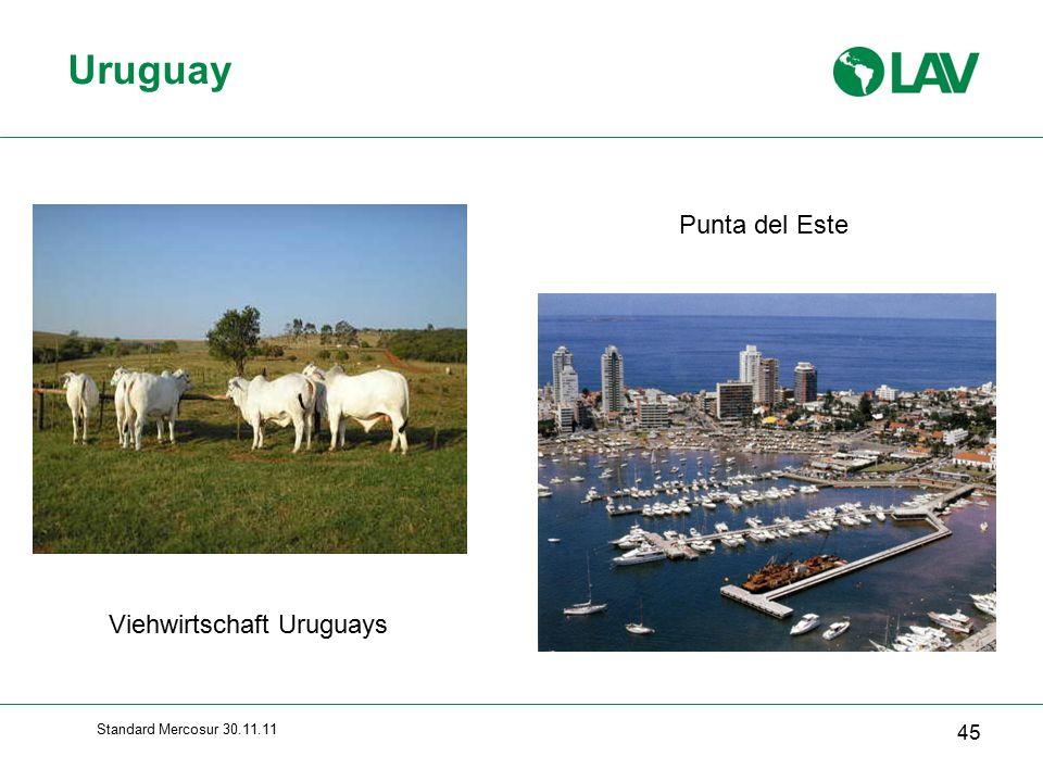 Standard Mercosur 30.11.11 Uruguay 45 Viehwirtschaft Uruguays Punta del Este