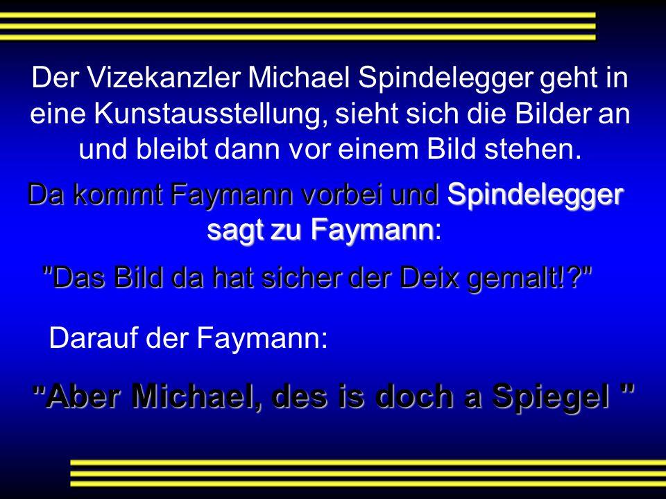 """Der B-Präsident machte wieder einmal Urlaub am Wolfgangsee. Als er dort ankam, wurde er vom Hoteldirektor freudig begrüßt: """"In diesem Jahr, Herr Präsi"""