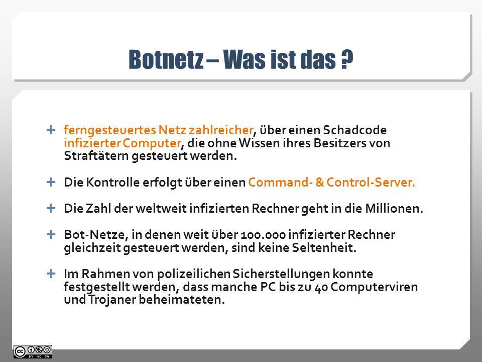 Botnetz – Was ist das .