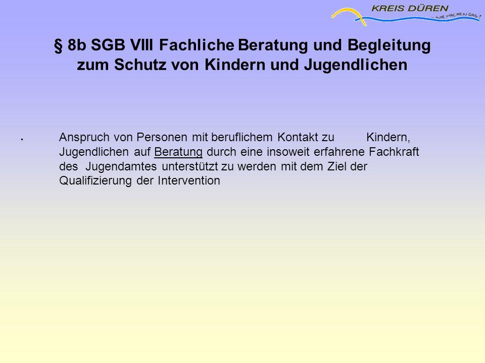 § 8b SGB VIII Fachliche Beratung und Begleitung zum Schutz von Kindern und Jugendlichen  Anspruch von Personen mit beruflichem Kontakt zu Kindern, Ju