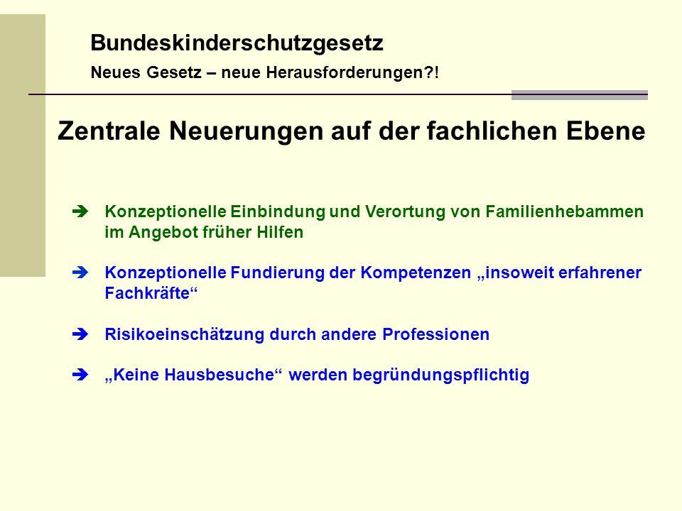 Bundeskinderschutzgesetz Neues Gesetz – neue Herausforderungen?.