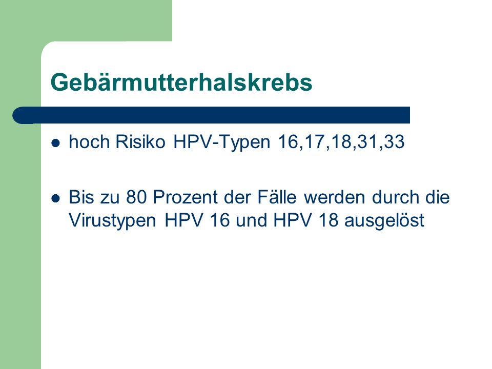 Gebärmutterhalskrebs hoch Risiko HPV-Typen 16,17,18,31,33 Bis zu 80 Prozent der Fälle werden durch die Virustypen HPV 16 und HPV 18 ausgelöst