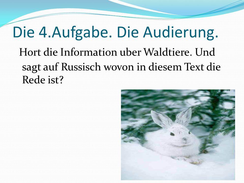 Die 4.Aufgabe. Die Audierung. Hort die Information uber Waldtiere.