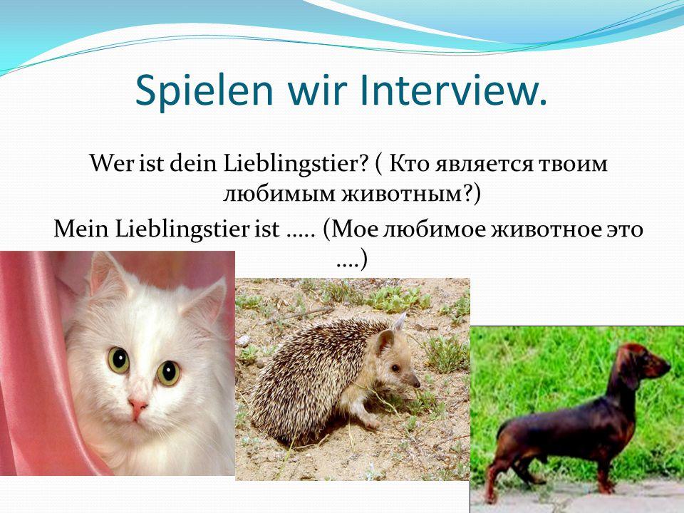 Spielen wir Interview. Wer ist dein Lieblingstier.