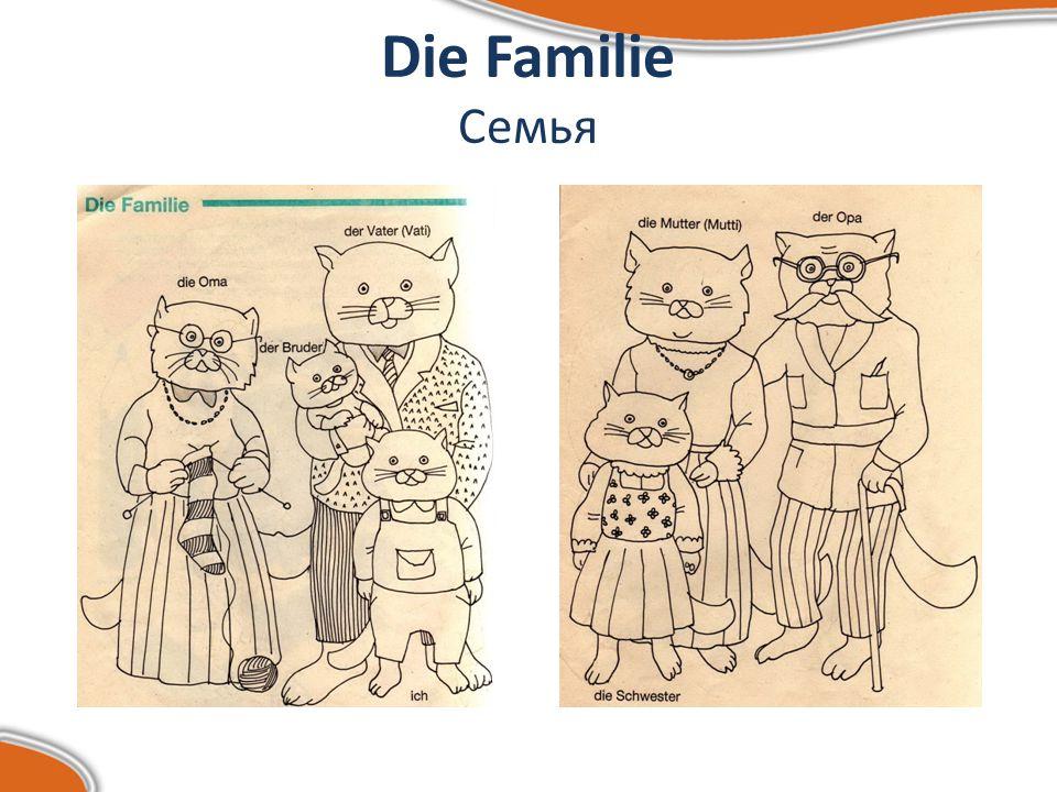 Die Familie Семья Ich(я) – mein(мой), meine(моя, мои) Du (ты) - dein(твой), deine(твоя, твои) Er(он) – sein(его), seine(его, его) Es(оно) – sein(его), seine(его, его) Wir(мы) – unser(наш), unsere(наша, наши) Ihr(вы) – euer(ваш), euere(ваша, ваши) Sie (они) – ihr(их), ihre(их, их) Sie (Вы) – Ihr(Ваш), Ihre(Ваша, Ваши)