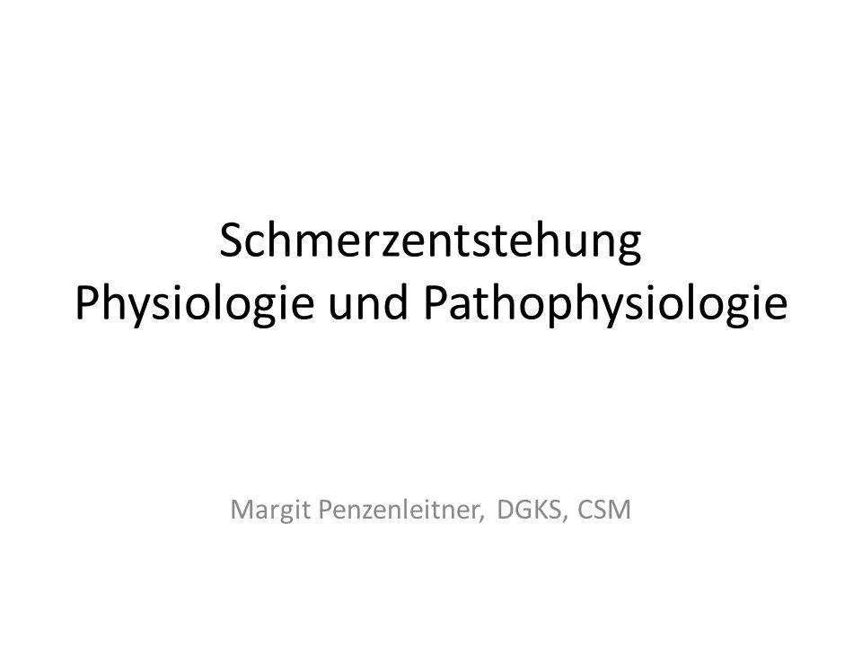 Schmerzentstehung Physiologie und Pathophysiologie Margit Penzenleitner, DGKS, CSM