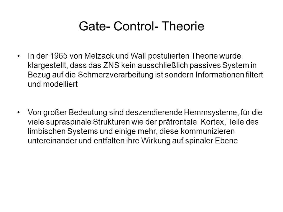 Gate- Control- Theorie In der 1965 von Melzack und Wall postulierten Theorie wurde klargestellt, dass das ZNS kein ausschließlich passives System in B