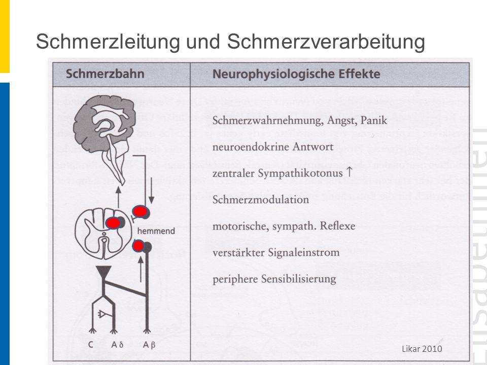 Schmerzleitung und Schmerzverarbeitung Likar 2010