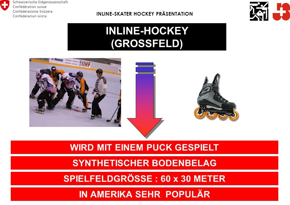 INLINE-SKATER HOCKEY (KLEINFELD) SPORTART IM AUFSCHWUNG, DANK DEM INLINE-SKATING « BOOM » SPIELFELDGRÖSSE : 40 x 20 METER WIRD MIT EINEM BALL GESPIELT INLINE-SKATER HOCKEY PRÄSENTATION