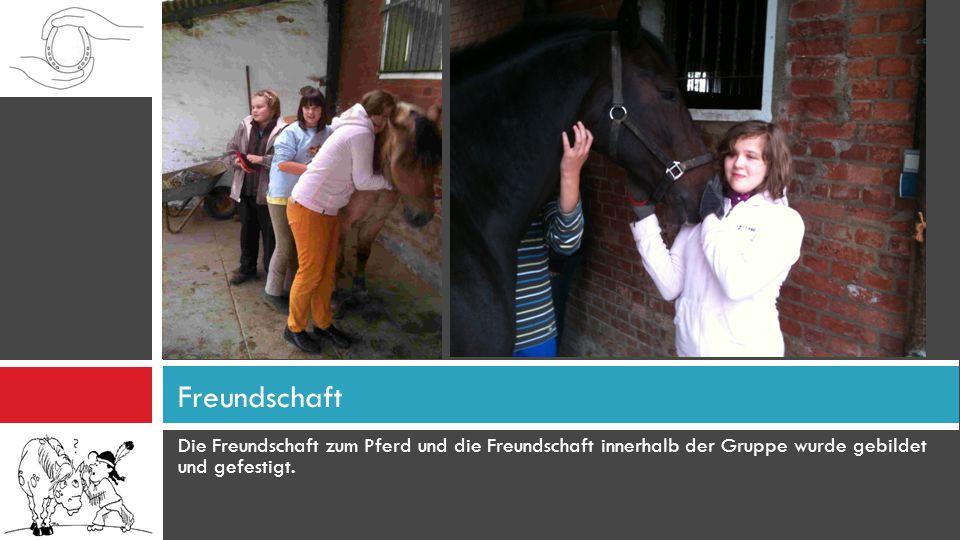 Die Freundschaft zum Pferd und die Freundschaft innerhalb der Gruppe wurde gebildet und gefestigt. Freundschaft