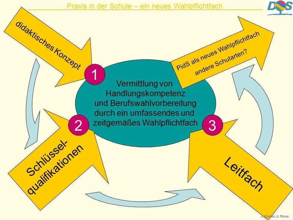 Vermittlung von Handlungskompetenz und Berufswahlvorbereitung durch ein umfassendes und zeitgemäßes Wahlpflichtfach didaktisches Konzept Schlüssel- qualifikationen PidS als neues Wahlpflichtfach andere Schularten.