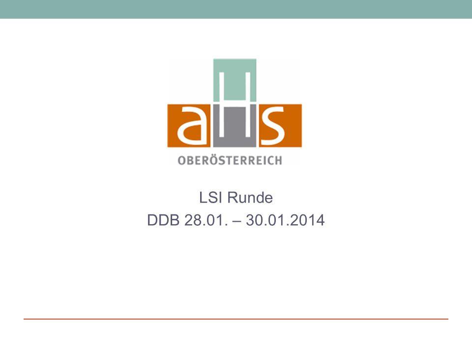 LSI Runde DDB 28.01. – 30.01.2014