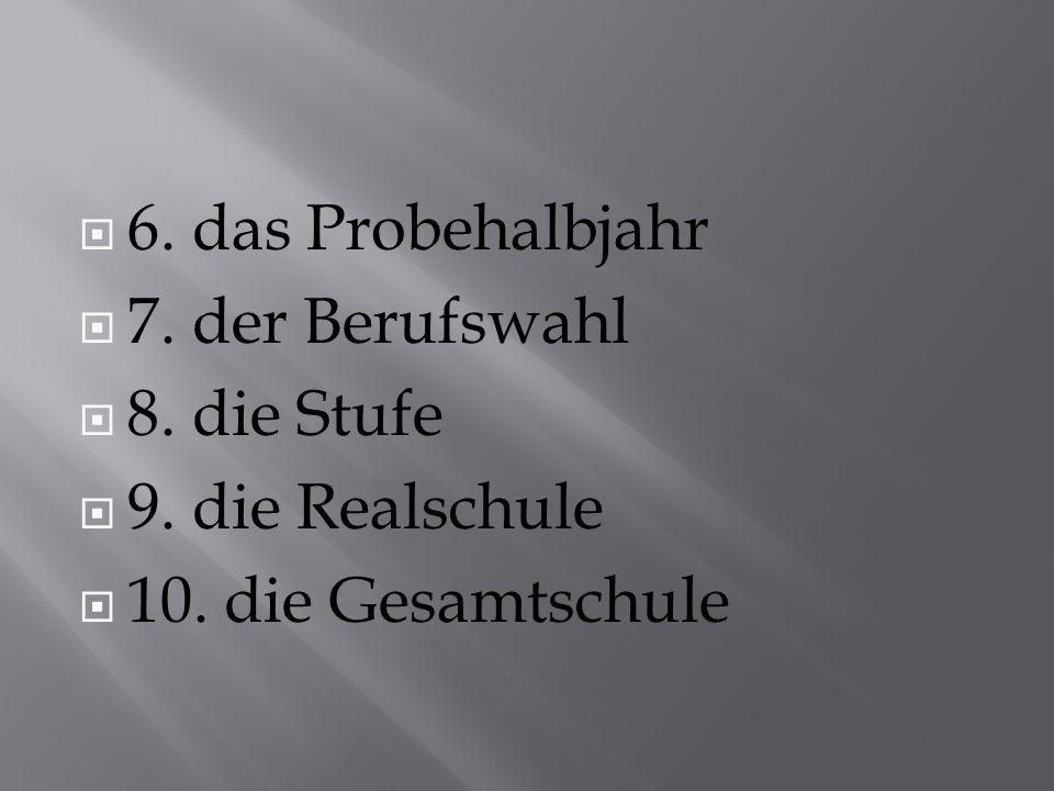  6. das Probehalbjahr  7. der Berufswahl  8. die Stufe  9.