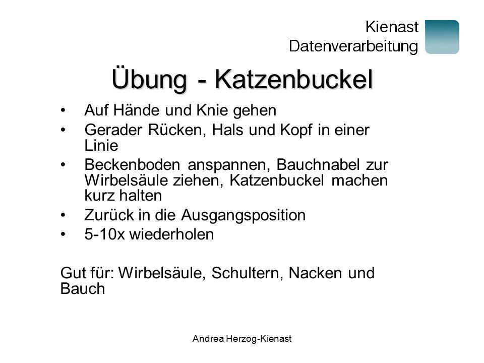 Andrea Herzog-Kienast Übung - Katzenbuckel Auf Hände und Knie gehen Gerader Rücken, Hals und Kopf in einer Linie Beckenboden anspannen, Bauchnabel zur