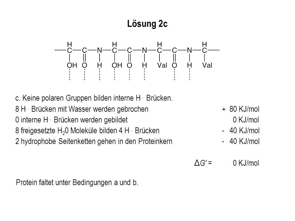 Lösung 2c c. Keine polaren Gruppen bilden interne H... Brücken. 8 H... Brücken mit Wasser werden gebrochen+ 80 KJ/mol 0 interne H... Brücken werden ge