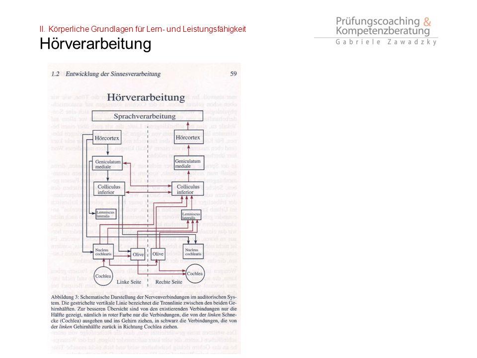 II. Körperliche Grundlagen für Lern- und Leistungsfähigkeit Hörverarbeitung