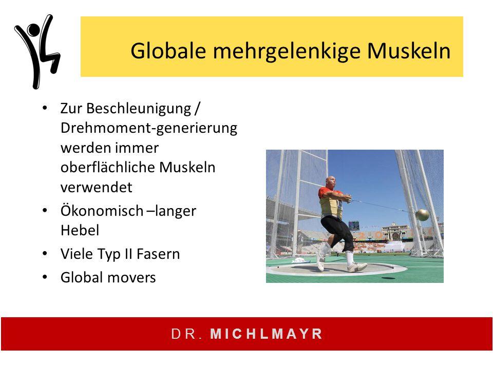 D R. M I C H L M A Y R Globale mehrgelenkige Muskeln Zur Beschleunigung / Drehmoment-generierung werden immer oberflächliche Muskeln verwendet Ökonomi