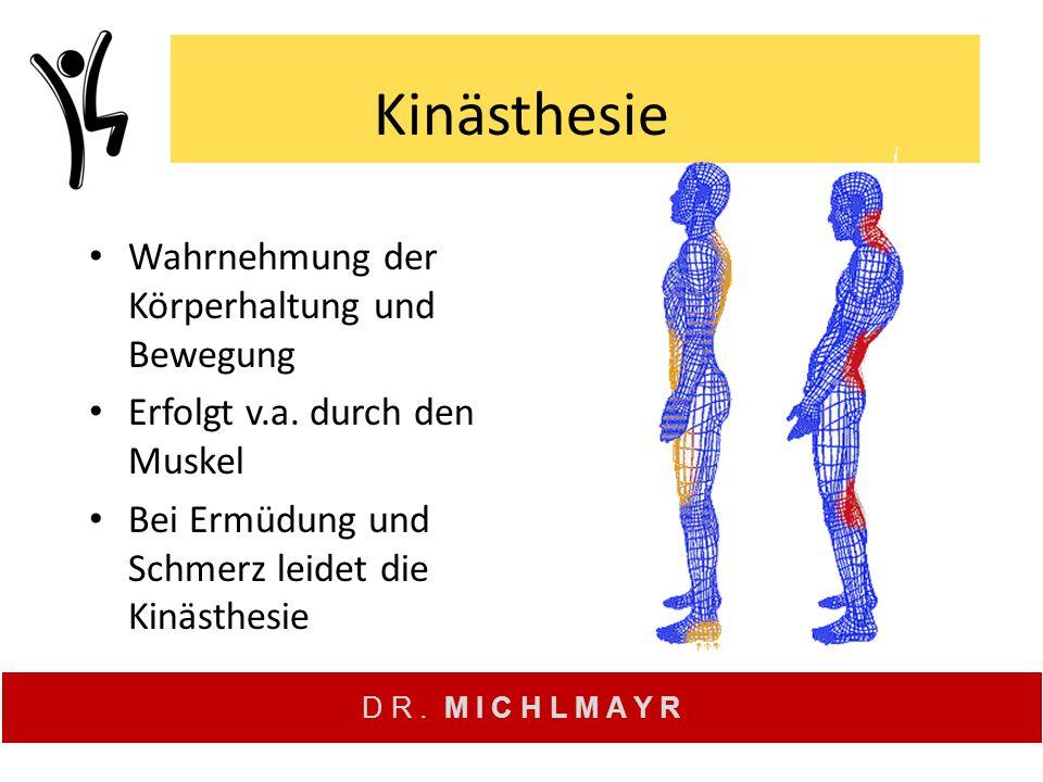 Kinästhesie Wahrnehmung der Körperhaltung und Bewegung Erfolgt v.a. durch den Muskel Bei Ermüdung und Schmerz leidet die Kinästhesie